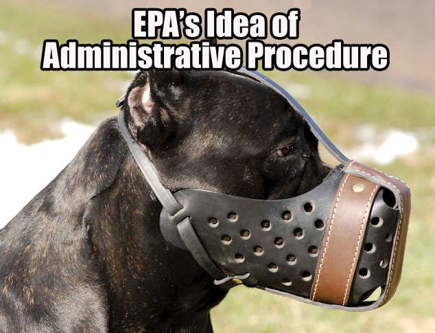 EPAS-Muzzle