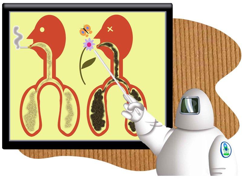 b1-epa-lungs-ah s800x594